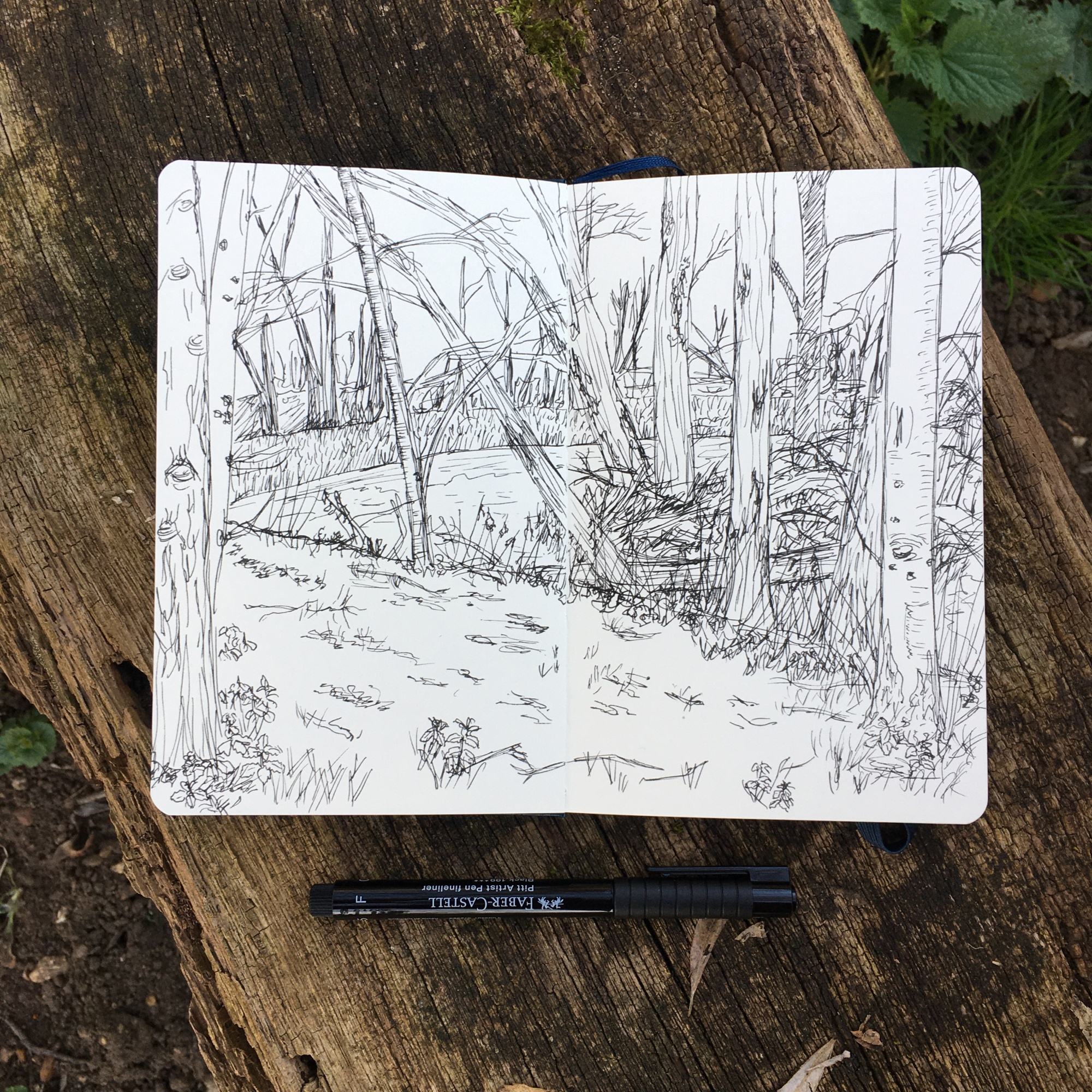 Image shows an open sketchbook lying on a rough wooden bench. On the pages of the sketchbook is a rough pen sketch of trees surrounding water and marshland.